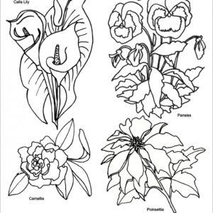 TP3148E_Easy_Emboss_Simply_Flowers_3__90411_zoom