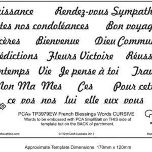 TP3979EW-Francais-Mots-4