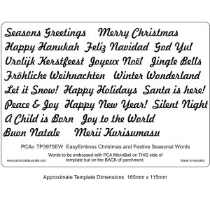 TP3975EW Christmas Festive words