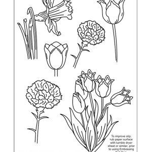 TP3499E Flowers - 9