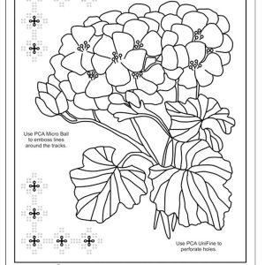 TP3573 Heathers Geranium